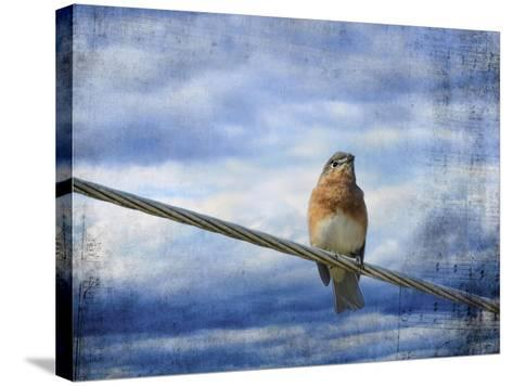 Heavenly Song of the Bluebird-Jai Johnson-Stretched Canvas Print