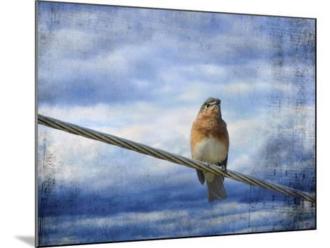 Heavenly Song of the Bluebird-Jai Johnson-Mounted Giclee Print