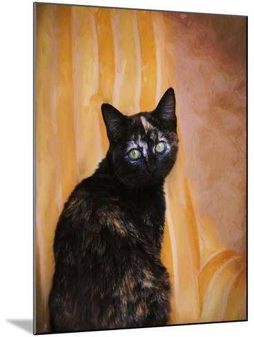 Royal Kitten-Jai Johnson-Mounted Giclee Print