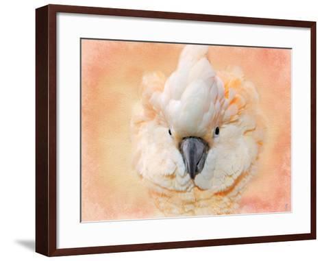 Salmon Crested Cockatoo Portrait 2-Jai Johnson-Framed Art Print