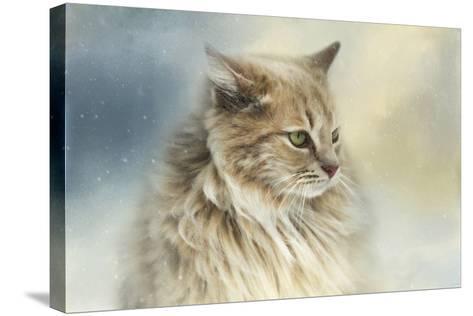 Watching Snow Fall-Jai Johnson-Stretched Canvas Print