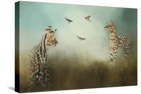 Watching the Waxwings-Jai Johnson-Stretched Canvas Print
