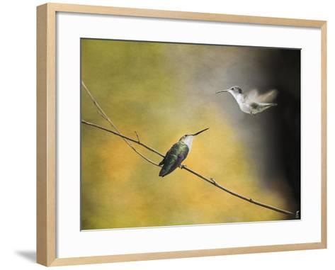 Whisper of Your Wings Hummingbirds-Jai Johnson-Framed Art Print