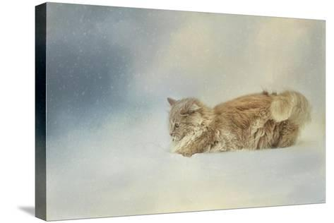 Snow Diving-Jai Johnson-Stretched Canvas Print