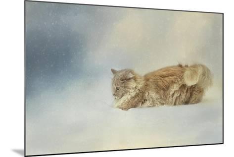 Snow Diving-Jai Johnson-Mounted Giclee Print