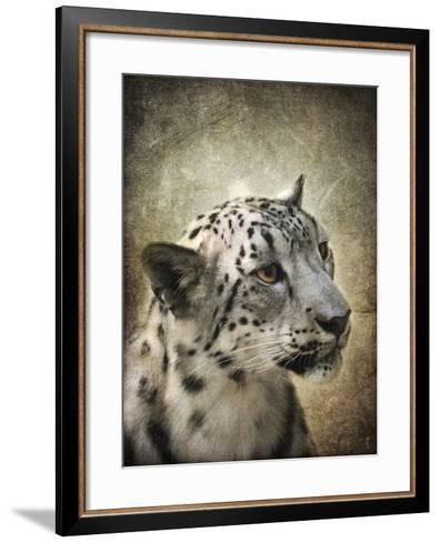 Snow Leopard Portrait-Jai Johnson-Framed Art Print
