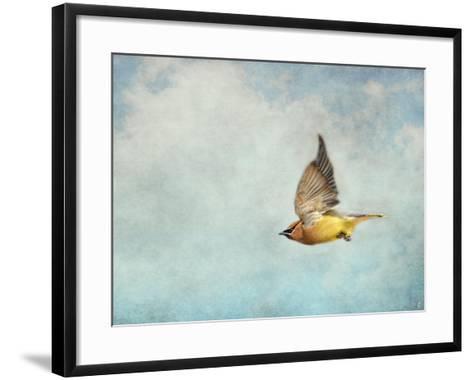 Winter Flight Cedar Waxwing-Jai Johnson-Framed Art Print