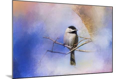 Winter Morning Chickadee-Jai Johnson-Mounted Giclee Print