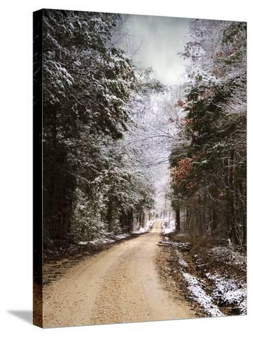 Winter Paradise-Jai Johnson-Stretched Canvas Print