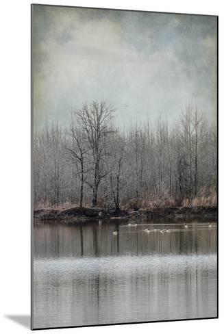 Winter Solitude-Jai Johnson-Mounted Giclee Print