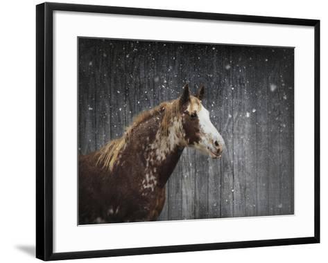 Winters Arrival Horse-Jai Johnson-Framed Art Print