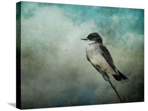 Wishing-Jai Johnson-Stretched Canvas Print
