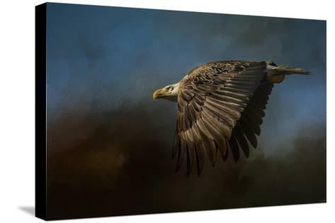 Storm Chaser Bald Eagle-Jai Johnson-Stretched Canvas Print