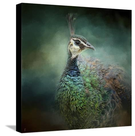 Peacock 12-Jai Johnson-Stretched Canvas Print
