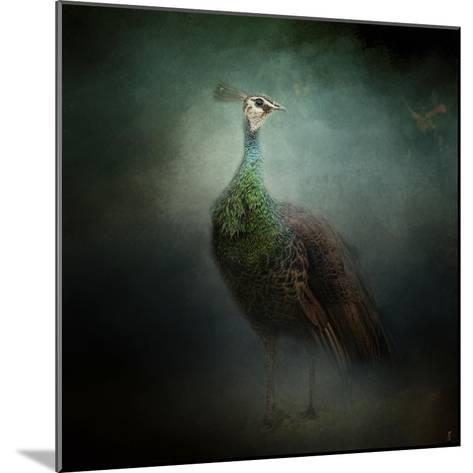 Peacock 2-Jai Johnson-Mounted Giclee Print