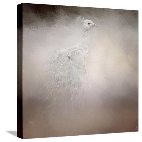 Peacock 6-Jai Johnson-Stretched Canvas Print