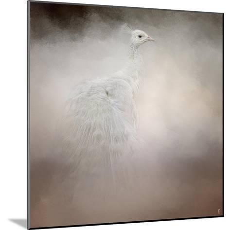 Peacock 6-Jai Johnson-Mounted Giclee Print