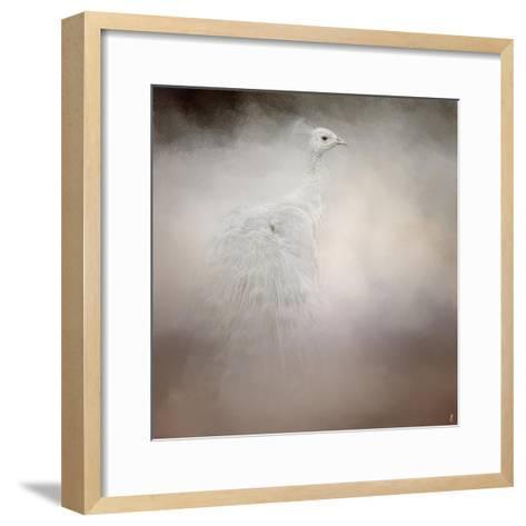 Peacock 6-Jai Johnson-Framed Art Print
