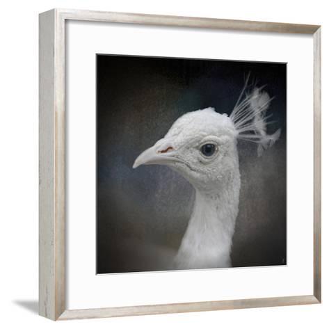 Peacock 9-Jai Johnson-Framed Art Print