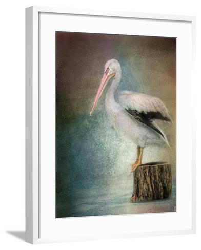 Perched Pelican-Jai Johnson-Framed Art Print