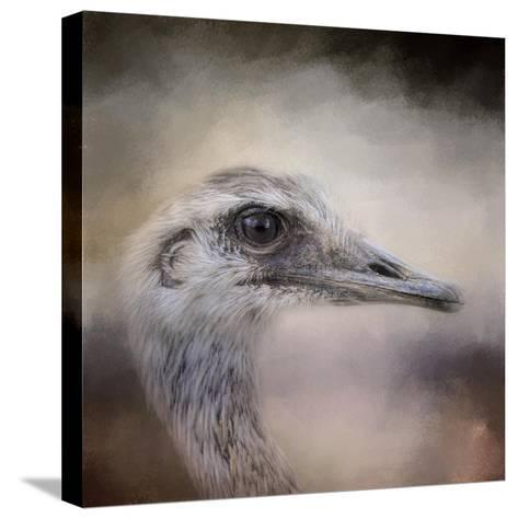 Poised Ostrich-Jai Johnson-Stretched Canvas Print