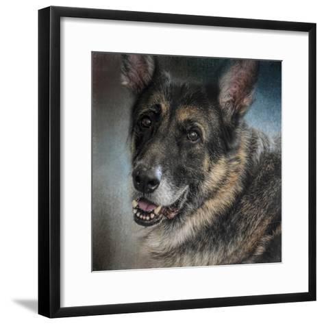 Portrait of a Shepherd-Jai Johnson-Framed Art Print