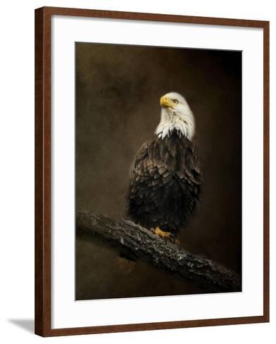Portrait of an Eagle-Jai Johnson-Framed Art Print