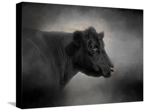 Portrait of the Black Angus-Jai Johnson-Stretched Canvas Print