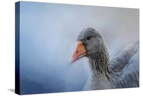 The Greylag Goose-Jai Johnson-Stretched Canvas Print