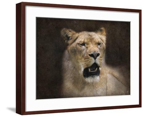 The Lioness Portrait-Jai Johnson-Framed Art Print