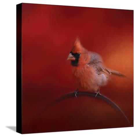 Radiant Redbird-Jai Johnson-Stretched Canvas Print