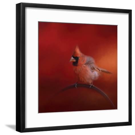 Radiant Redbird-Jai Johnson-Framed Art Print