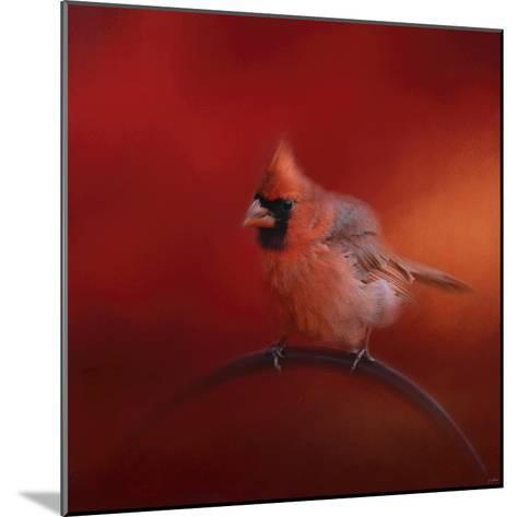 Radiant Redbird-Jai Johnson-Mounted Giclee Print