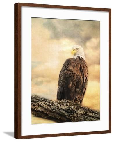 The Queen at Rest Bald Eagle-Jai Johnson-Framed Art Print