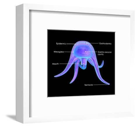 Medusa Form-7activestudio-Framed Art Print