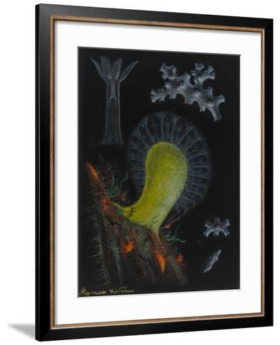 Dead Man's Fingers-Philip Henry Gosse-Framed Art Print