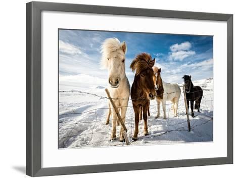 Icelandic Hair Style-Mike Leske-Framed Art Print