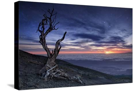 Beyond the Sky-Andrea Auf-Stretched Canvas Print
