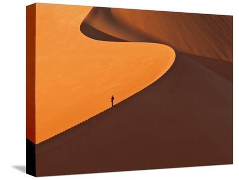 Gratwanderung-Reinhard Gaemlich-Stretched Canvas Print
