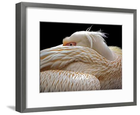 To Be Half Asleep...-Thierry Dufour-Framed Art Print