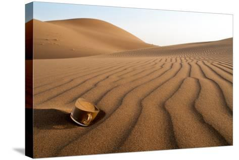 The Thirsty Desert.-Soheil Soheily-Stretched Canvas Print