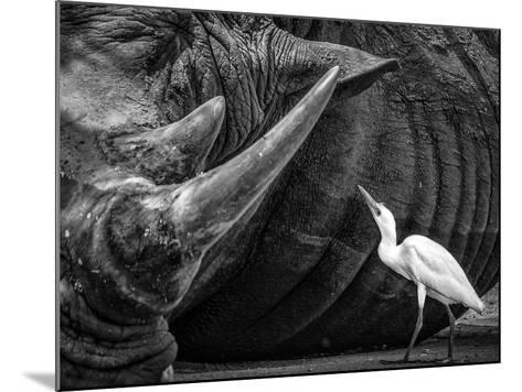 Personal Advisor-Giovanni Casini-Mounted Photographic Print
