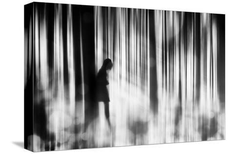 Caught in the Sorrow-Stefan Eisele-Stretched Canvas Print
