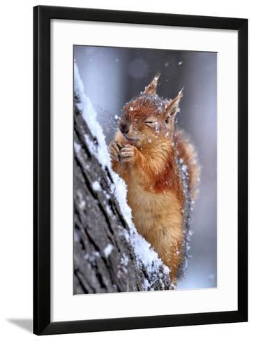 Winter-Ervin Kobakci-Framed Art Print
