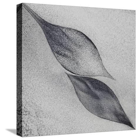 Shaped by a Creative Wind-Piet Flour-Stretched Canvas Print