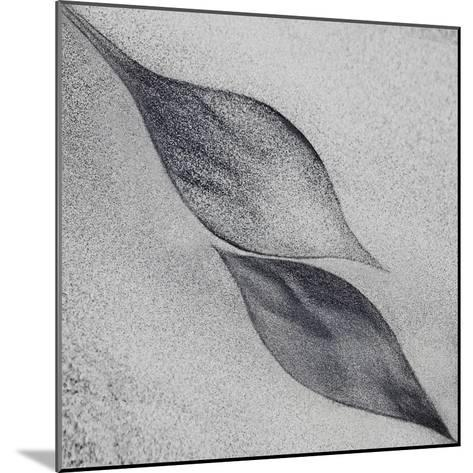 Shaped by a Creative Wind-Piet Flour-Mounted Photographic Print