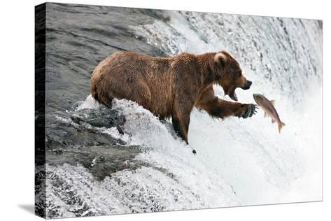 Unlucky Jump-Peter Stahl-Stretched Canvas Print