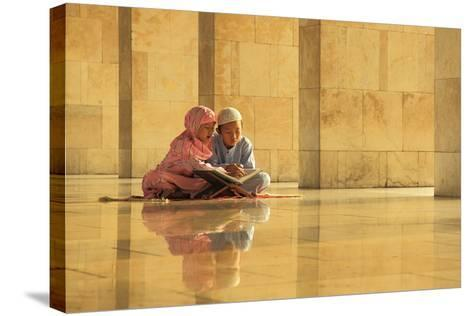 Learning-Hedianto Hs-Stretched Canvas Print
