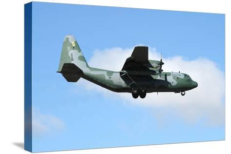 Brazilian Air Force C-130 Hercules Prepares for Landing-Stocktrek Images-Stretched Canvas Print