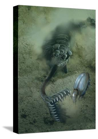 A Fearsome Opabinia Found in the Middle Cambrian Burgess Shale Formation-Stocktrek Images-Stretched Canvas Print
